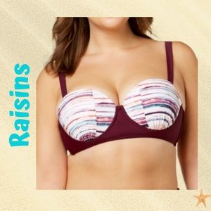 Plus Size  Baja Surf Underwire Push up Bikini Top